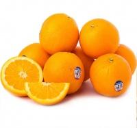 迦麦 新奇士美国脐橙12只装(单果约180g-220g/个) 美国进口