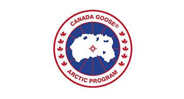 加拿大鹅(Canada Goose)